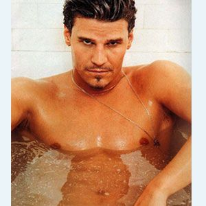 David Boreanaz  bath