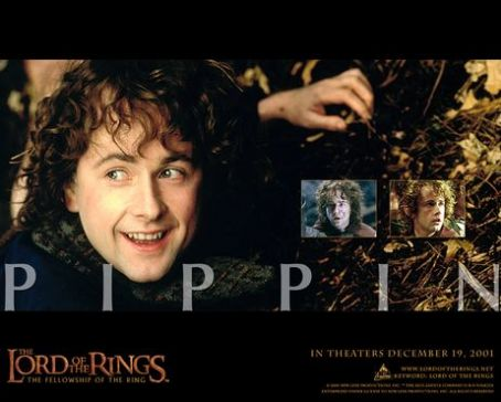 Billy Boyd  as pippin
