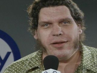 André the Giant - André the Giant