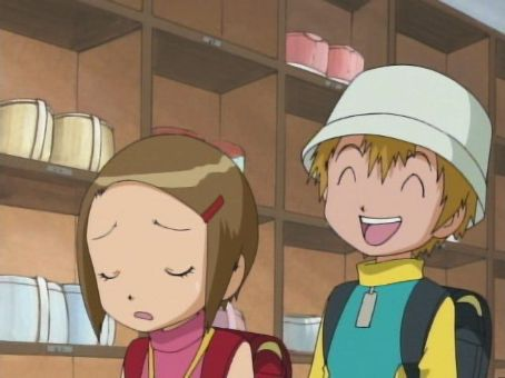 Digimon: Digital Monsters tk and kari