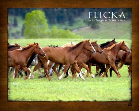 Flicka  (2006)