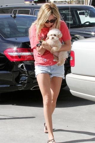 Ashley Tisdale: Shopping with Maui at Planet Blue in Beverly Hills